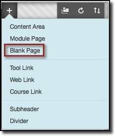 Dropdown menu, blank page option highlighted