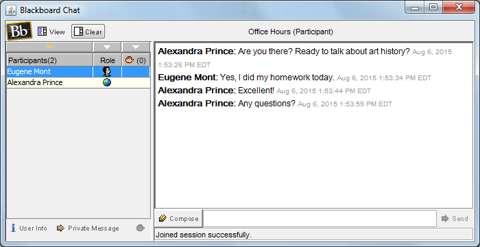 Example chat window.