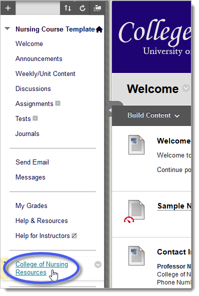 Blackboard course menu with College of Nursing Resources link circled