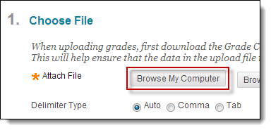 Browse my computer radio button circled
