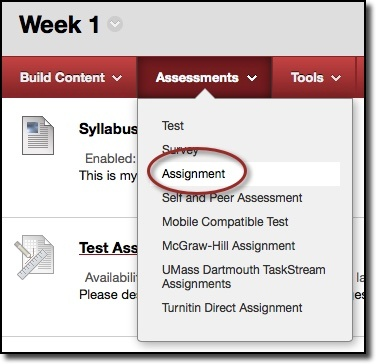 Assessments dropdown menu, assignment circled